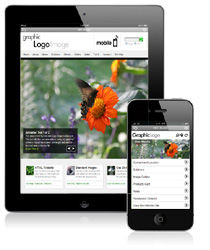 Choosing a Mobile Version or a Responsive Design