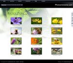 Photography web page template