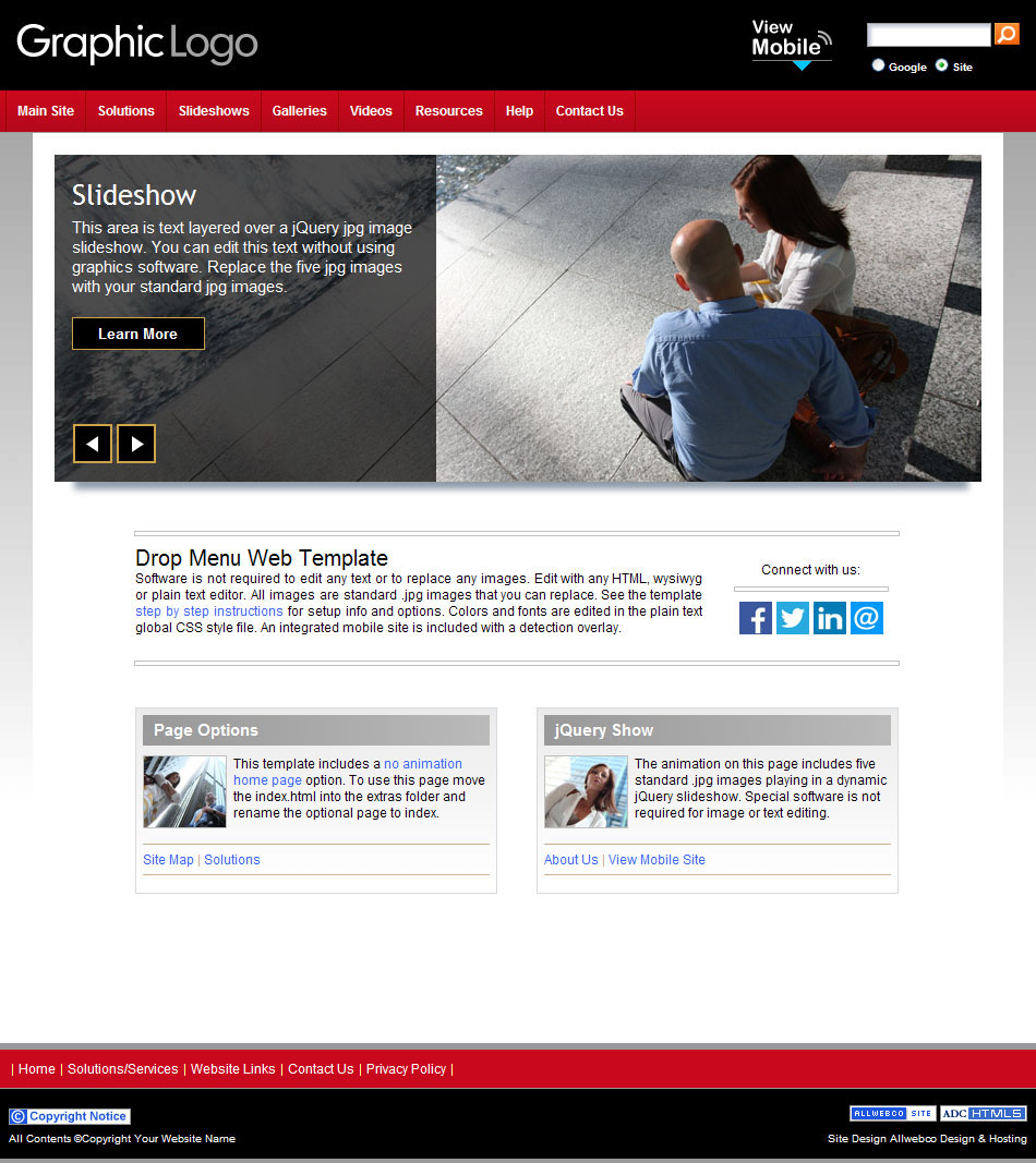 Red Theme HTML CSS BizzyDM Website Layout Drop Menus - Privacy policy html template